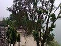 View fron Shiv Mandir (Bateshwar Hills).jpg