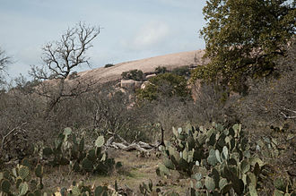 Fredericksburg, Texas - View of Enchanted Rock