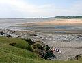 View of Traeth yr Afon across the River - geograph.org.uk - 184283.jpg