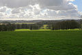 View over pasture and woodland from Hinton Ampner - geograph.org.uk - 356876.jpg