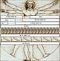 Vitruvian Man Measurements he.JPG