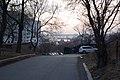 Vladivostok Cheromukhovaya UL 2019-03 3.jpg