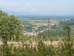Vue sur Dambenoît-lès-Colombe.jpg