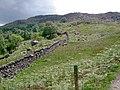 Walled plantation and moorland near Watendlath - geograph.org.uk - 878646.jpg