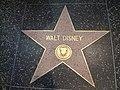 Walt disney star.JPG