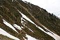 Wanderweg zur Bietschhornhütte - panoramio.jpg