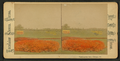 Washington Park, Chicago, Ill, by Chase, W. M., 1818 or 19-1905.png