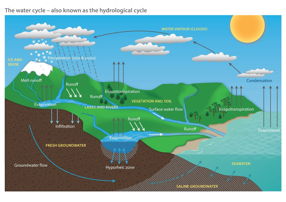 File Water Cycle Diagram Pdf