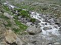 Water stream in Deosai Plateau.JPG