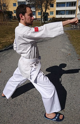Tang Soo Do - Tang Soo Do white belt practitioner performing a punch