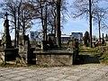 Widok cmentarza.jpg