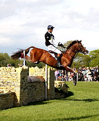 William Fox-Pitt on Chilli Morning at Badminton 2015.JPG