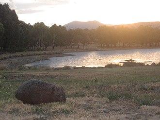 Stranger Pond - A wombat enjoying the sunset, Stranger Pond, 2007