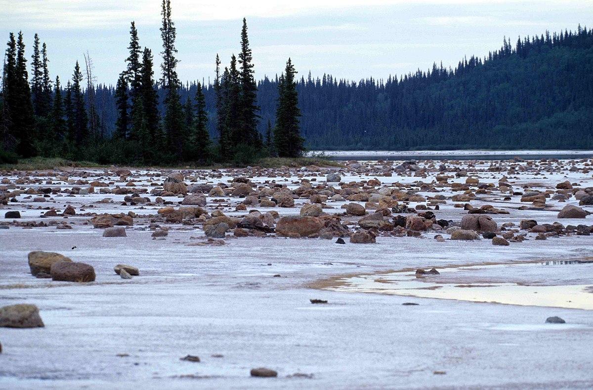 1200px Wood Buffalo NP_Gros_Beak_Lake_2_98 07 02