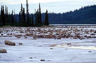 Wood Buffalo National Park - Grosbeak Lake