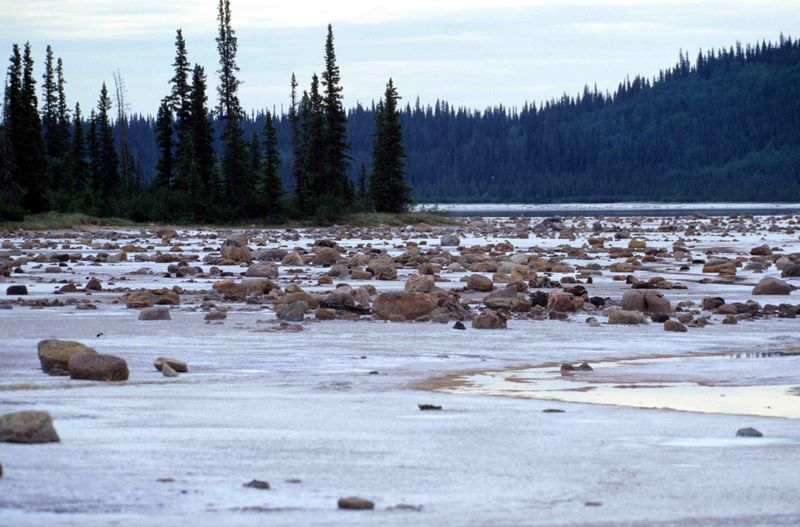 800px-Wood-Buffalo-NP_Gros_Beak_Lake_2_98-07-02