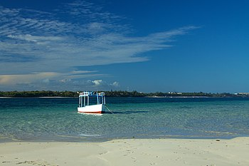 Wooden boat off-shore in Mombasa's Marine Park.jpg