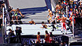 WrestleMania 31 2015-03-29 15-06-32 ILCE-6000 5328 DxO (17403138408).jpg