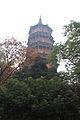 Wuhan Hongshan Baota 2012.11.21 11-33-31.jpg
