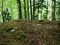 Wunnenberg Schönholzerswilen P1030148.jpg