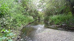 Yeading Brook Meadows - Yeading Brook in Yeading Brook Meadows