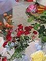 Zámek Veltrusy. Soutěžní výstava růží 2012 8.JPG