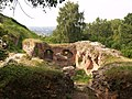 Zamek w Tarnowie ffolas 01.jpg