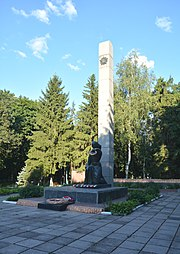 Zinkiv May 01 Str. Park WW2 Memorial Complex Monument to WW2 Warriors from Zinkiv raion (YDS 1546).jpg