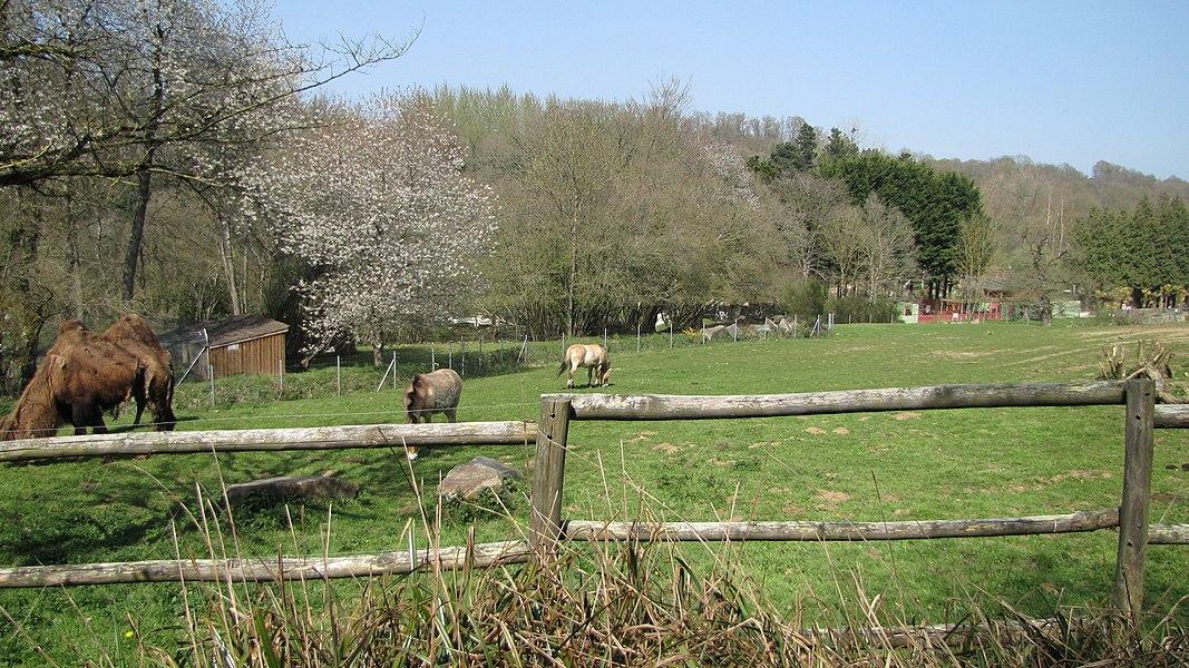 Zoo Trégomeur