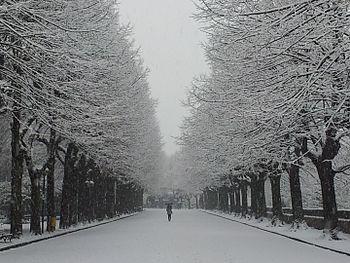 """""""La Passeggiata"""" e la neve.jpg"""