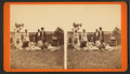 'Brethern and sisters.' - Florida, from Robert N. Dennis collection of stereoscopic views.png