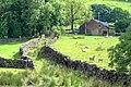 'Green' Lane at Hollin Bush Farm - geograph.org.uk - 846594.jpg