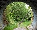 'Tunnel' bridge under A423 - geograph.org.uk - 1305098.jpg