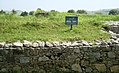 (By @ibnAzhar)-2000 Yr Old Sirkup Remains-Taxila-Pakistan (20).JPG