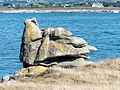 Île vierge - Plouguerneau - Finistère (9596167458).jpg