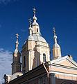 Андреевский собор.СПб 01.jpg
