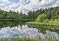 Быковщинское озеро и облака.jpg