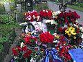 Михаил Горшенёв (могила).jpg