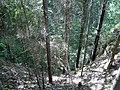 Обрыв - panoramio.jpg