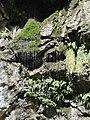 Окрестности Гегского водопада - panoramio (1).jpg