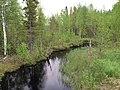 Река Марья (Карелия) 2.jpg
