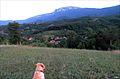 Село Вета.jpg