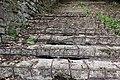 Сходи лісопарку (Тонкочеєва) IMG 9569.jpg
