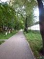 Ул. Старцева -август, 2011 - panoramio (3).jpg