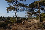 מבצר עתלית - אתרי מורשת במישור החוף 2016 (41).jpg