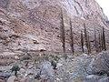 أحد المناظر الطبيعية من داخل وادي الاربعين بسانت كاترين بجنوب سيناء.JPG