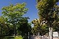 つくば中央公園 - panoramio (1).jpg