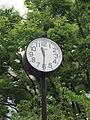 リアル鳩時計 (14100618543).jpg