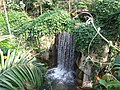 南山植物园-瀑布 - panoramio.jpg