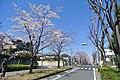 南生田三丁目公園交差点 - panoramio.jpg